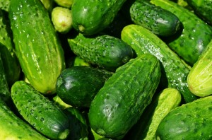 cucumbers-849269_960_720 krzys pixabay Free no attribution required