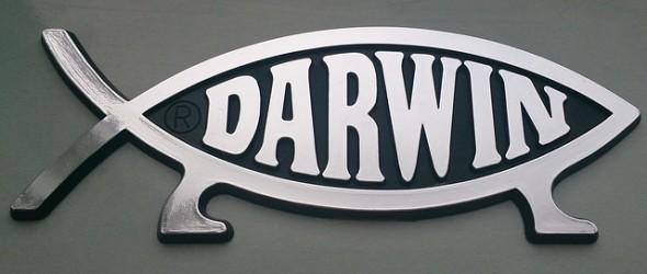 darwin-778446_640