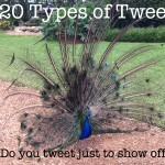 Twenty types of tweet: how many do you use on Twitter?
