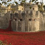 Lest We Forget. Remembrance Sunday and Those Tower Hill Poppies