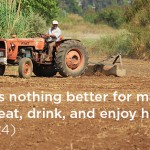 """You have eaten and drank, now work, and enjoy it!"" – The Bible"