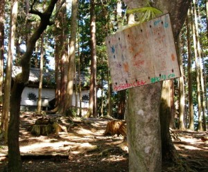 a handmade ema (prayer card) on a tree in a forest
