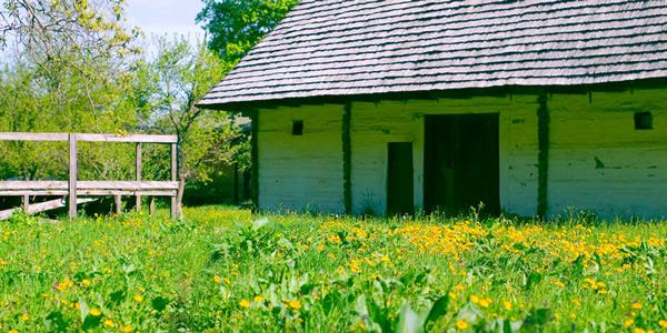 a rustic home in a field