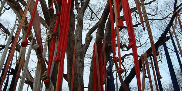 a tree with red ribbons hanging from it