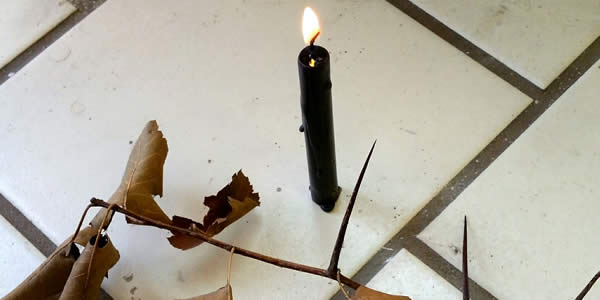 a lit black candle in front of a thorned branch