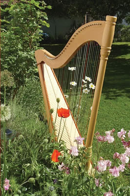 a harp placed outside by flowers