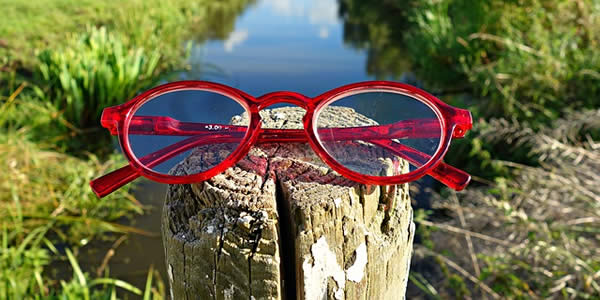 a pair of glasses on a fence post before a pond