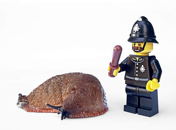 a slug and a Lego policeman figure