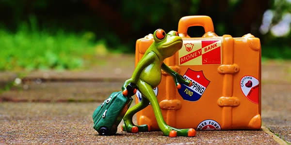 a figurine of a frog with a suitcase
