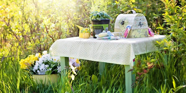 a small tabel on which rests some seeds, a small potted plant, a teakettle, and a woman's purse.  next to the table are potted flowers.  the entire display rests in a field of grasses and small shrubs.