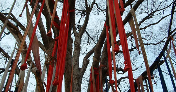 """""""Mudang's Tree"""" ©2008 Polly Peterson – Used with Permission"""
