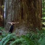 The Deep Ecology Tree