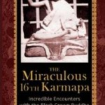 16th karmapa book