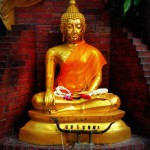 Facing Election Results with Buddhist Practices of Love, Compassion, Sympathetic Joy and Equanimity