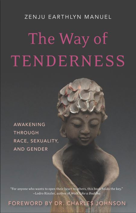 The Way of Tenderness  Awakening Through Race, Sexuality and Gender