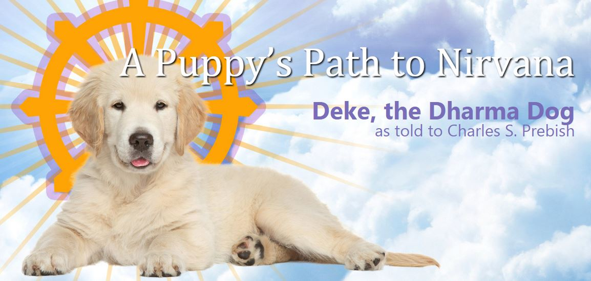 From the Dalai Lama's cat to Deke, the Dharma Dog, animals offer the Buddha's teachings