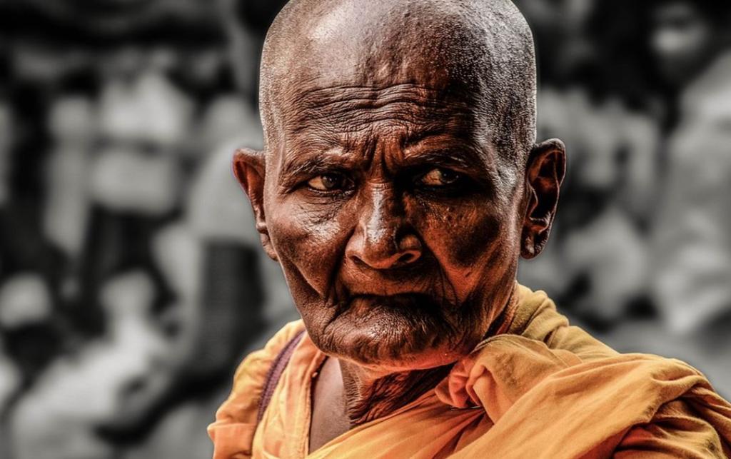 old monk (image via pixabay)