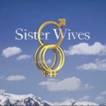 How does a Polygamous Family File Their Tax Returns? #sisterwives