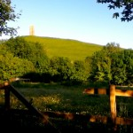 the Tor : Glastonbury