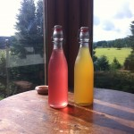 A bottle of honeysuckle cordial (pink) and a bottle of meadowseet cordial, both made this last weekend.