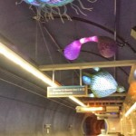 Sea Creatures.  Art in Beacon Hill Light Rail Station, Seattle, Washington