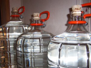 The glass carboys I use to gather wild spring water. Photo by the author.