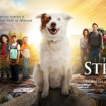 """""""The Stray"""": One Dog Changes Everything For Struggling Family"""