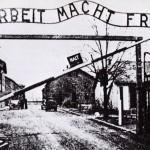 The Auschwitz Conflation