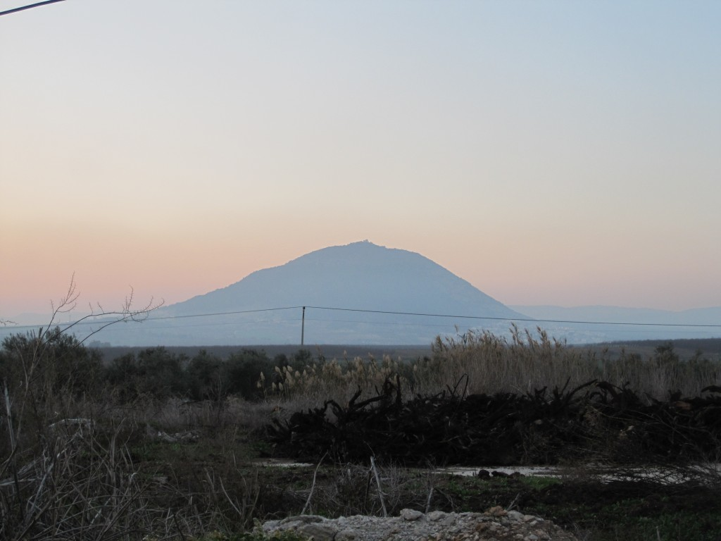 Mt Tabor