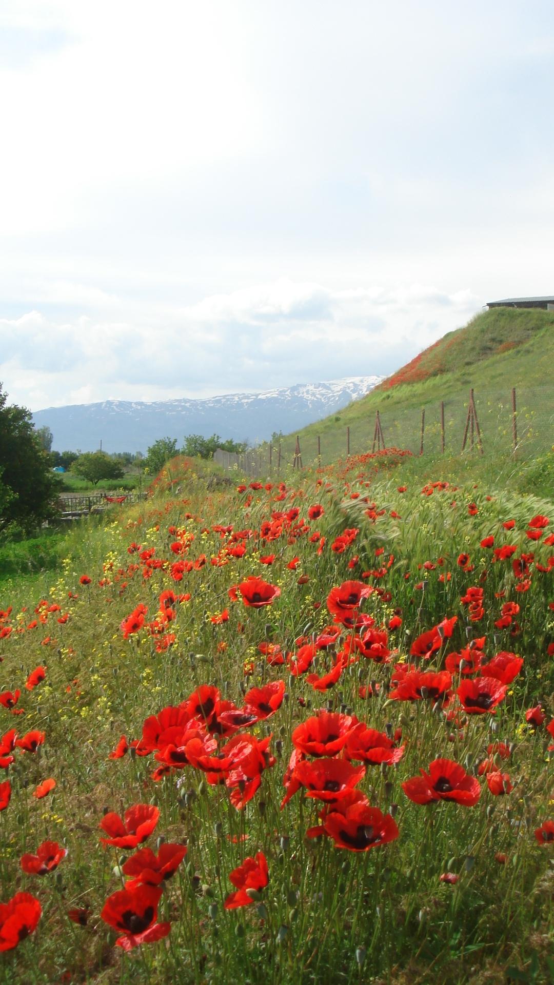 Turkey2011 344