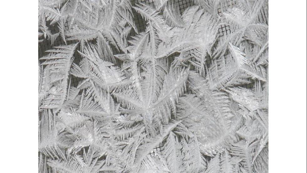 winterwonderland12