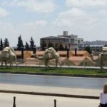 Turkey 2016 Part Seven–  A Bazaar Time in Gaziantep