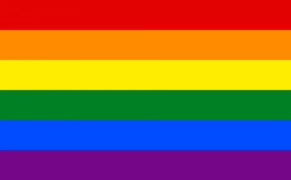Gay_flag. enwikipedia.org