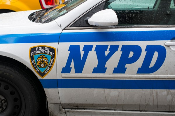 NEW YORK, US - NOVEMBER 22: Detail of door of New York Police ca
