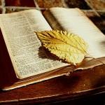 Rational Faith: Why God is Not a Malevolent Bully