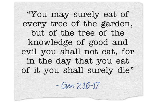 Tree Of Life Meaning And Bible Study Jack Wellman