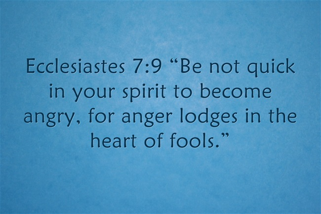 What Does Bible Say About Fools