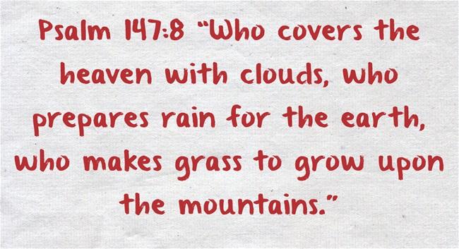top 7 bible verses about nature jack wellman