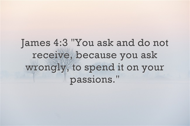 Top 7 bible verses about passion bible verses about passion negle Choice Image