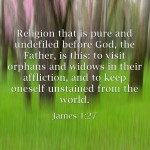 7 Important Bible Verses From The Book Of James
