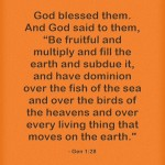 Be Fruitful And Multiply Bible Verse Meaning And Study