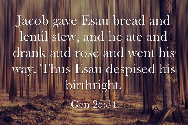 the birthright of jacob and esau Esau trades his birthright for some of jacob's stew  jacob takes esau's  birthright esau trades his birthright for some of jacob's stew genesis 25:27.