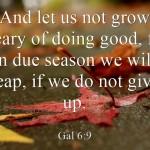 Top 7 Bible Verses To Get You Through Finals Week