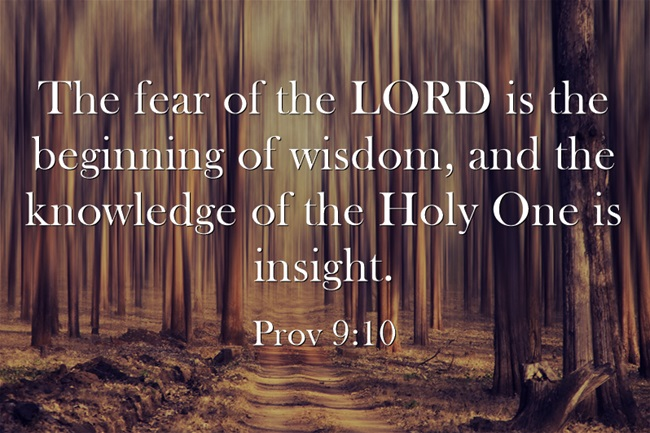fear of the lord is the The fear of the lord is the reverence one would pay to a king because he is the majesty but if one has offended the king and punishment is coming, that fear in the hebrew is yare yare is used in the phrase fear the lord 31 times in the old testament.