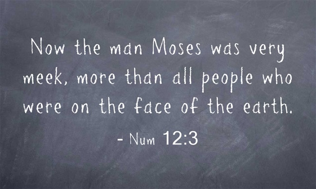 Wy Was Moses Considered A Man Of Faith 9
