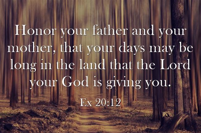 Honra a-su-padre-e (1)