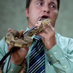 Snake Handling, Stigmata and Testing God