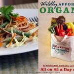 affordable organic