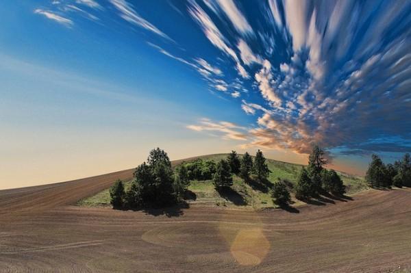 farmland-768603_640