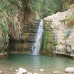 The Nahal David waterfall at the oasis of En Gedi on the western shore of the Dead Sea in the Judean Wilderness